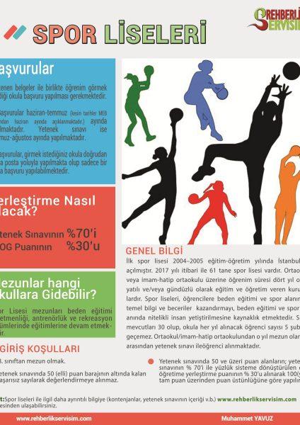 2017 Spor Liseleri Tanıtım Afişi