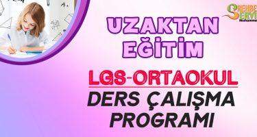 LGS uzaktan eğitim ders çalışma programıI